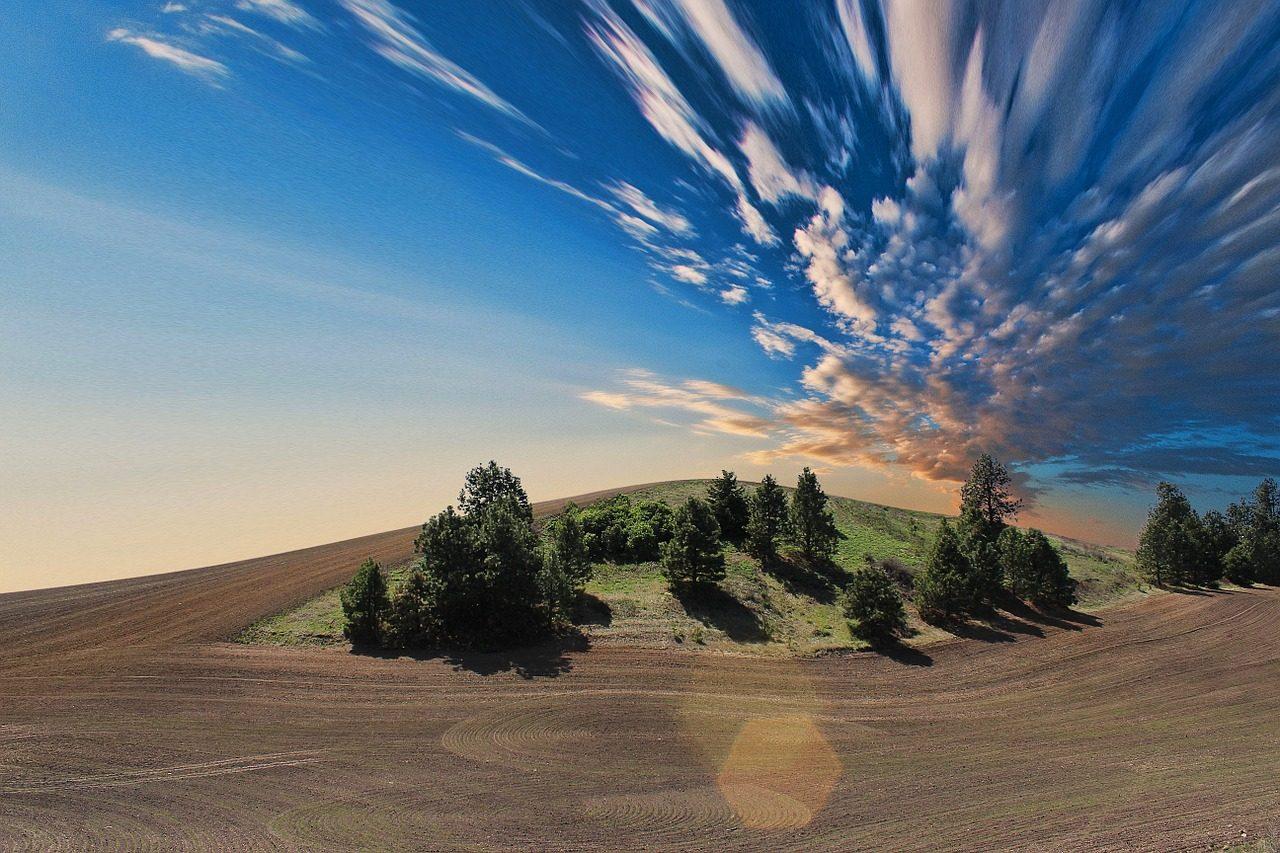 farmland-768603_1280-1280x853.jpg